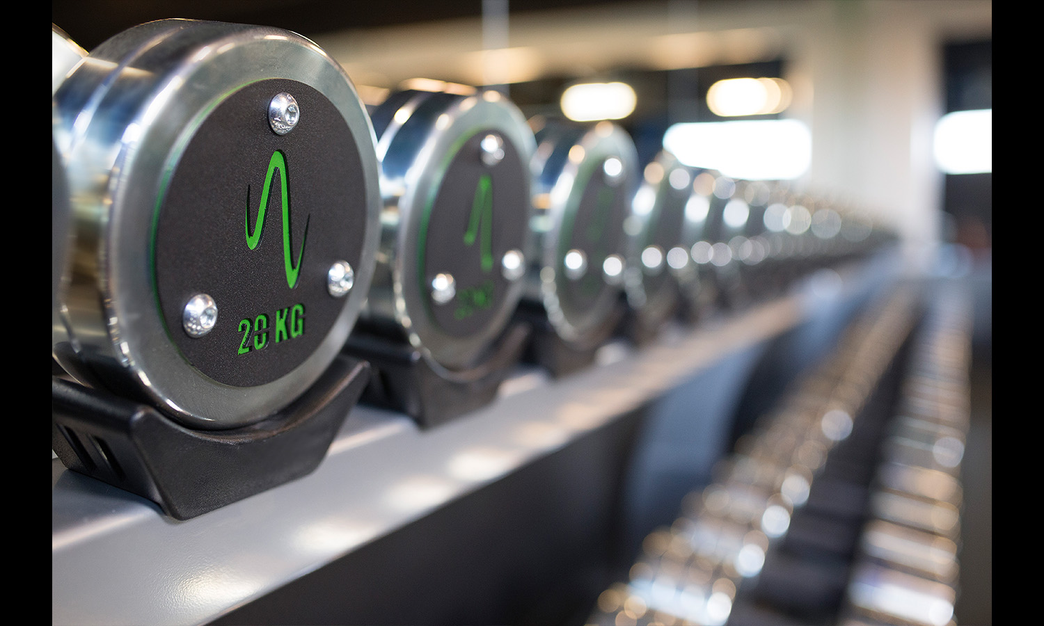 advertising image of weights at gym